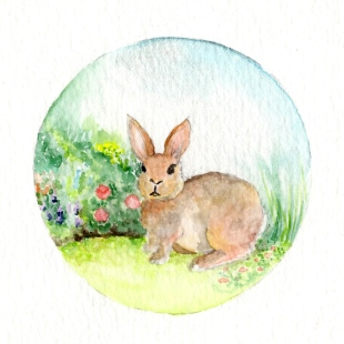 Little Garden Rabbit